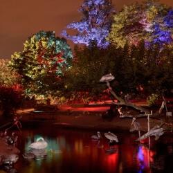 Bühnenbild Zoonacht