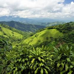 Bühnenbild Costa Rica