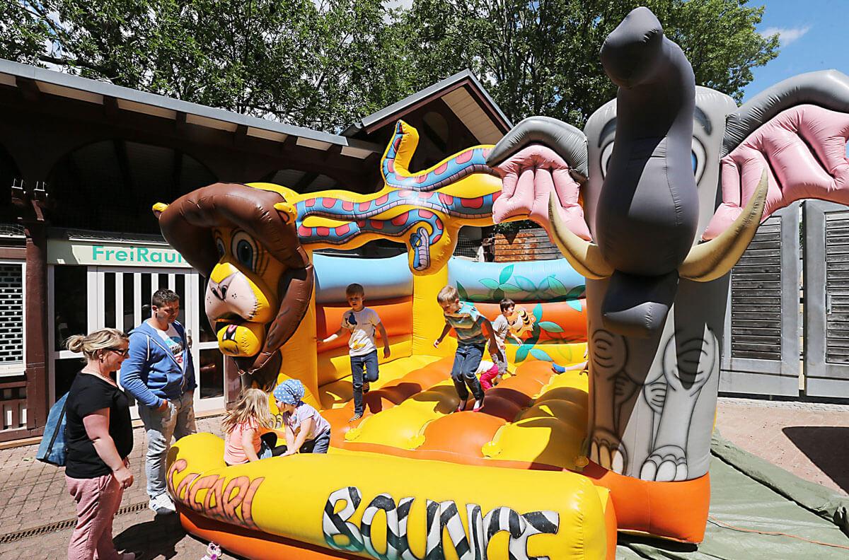 03.07.2016 Bergzoo Halle Zoofest, Steffen Schellhorn