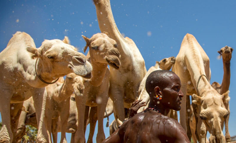 360 Grad Film My Africa Artikelbild 2