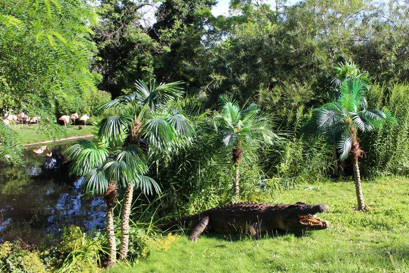 Der Dschungel Ruft Artikelbild 2