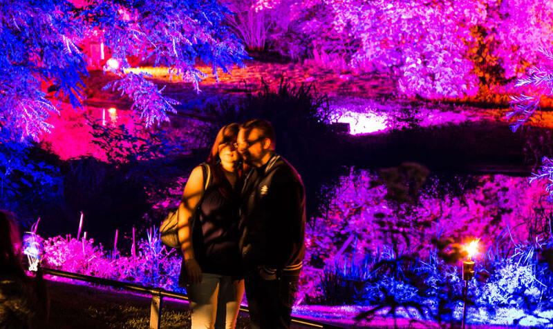 Nachts Im Zoo Artikelbild 3