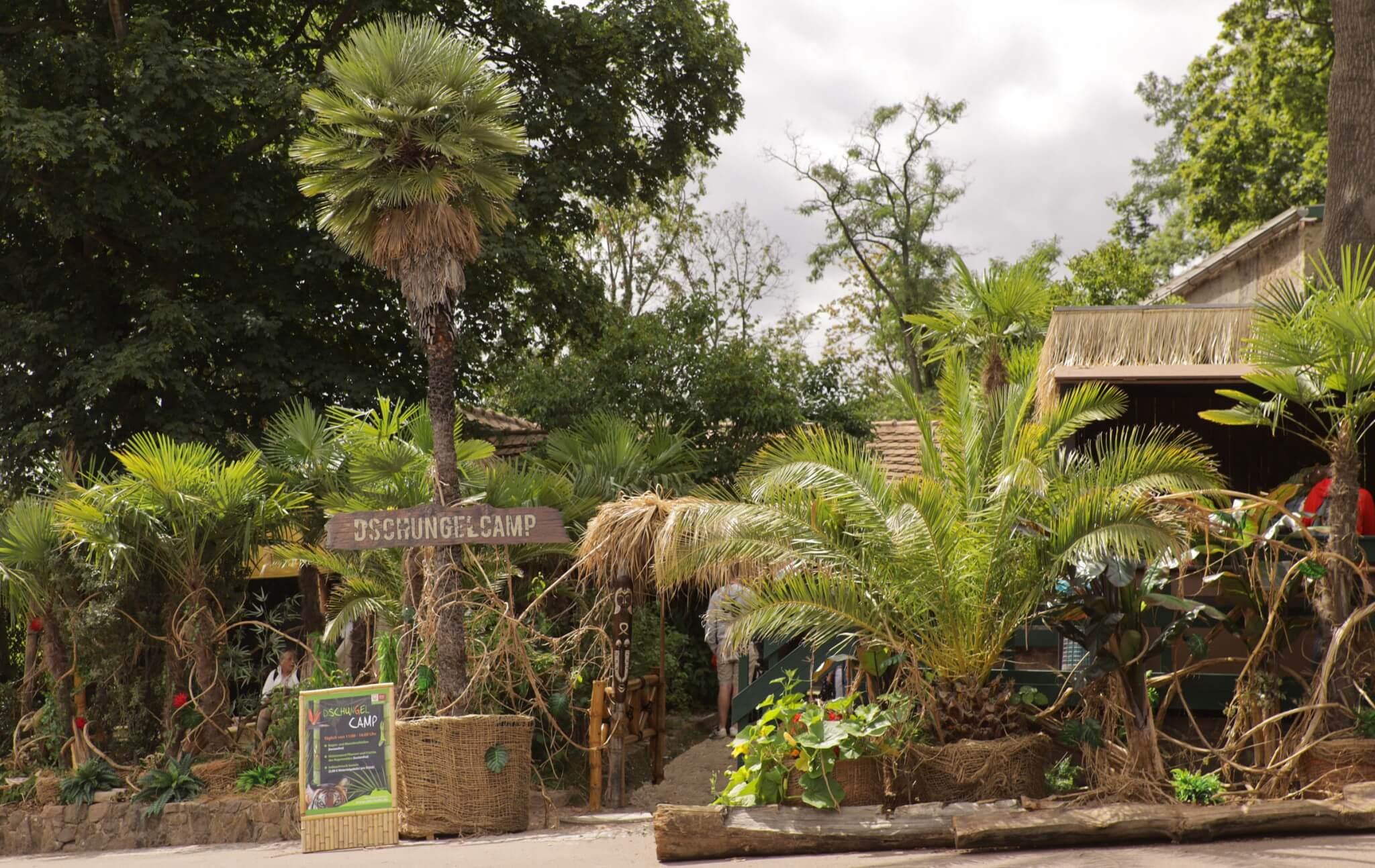 Artikelbild 2 Dschungelcamp