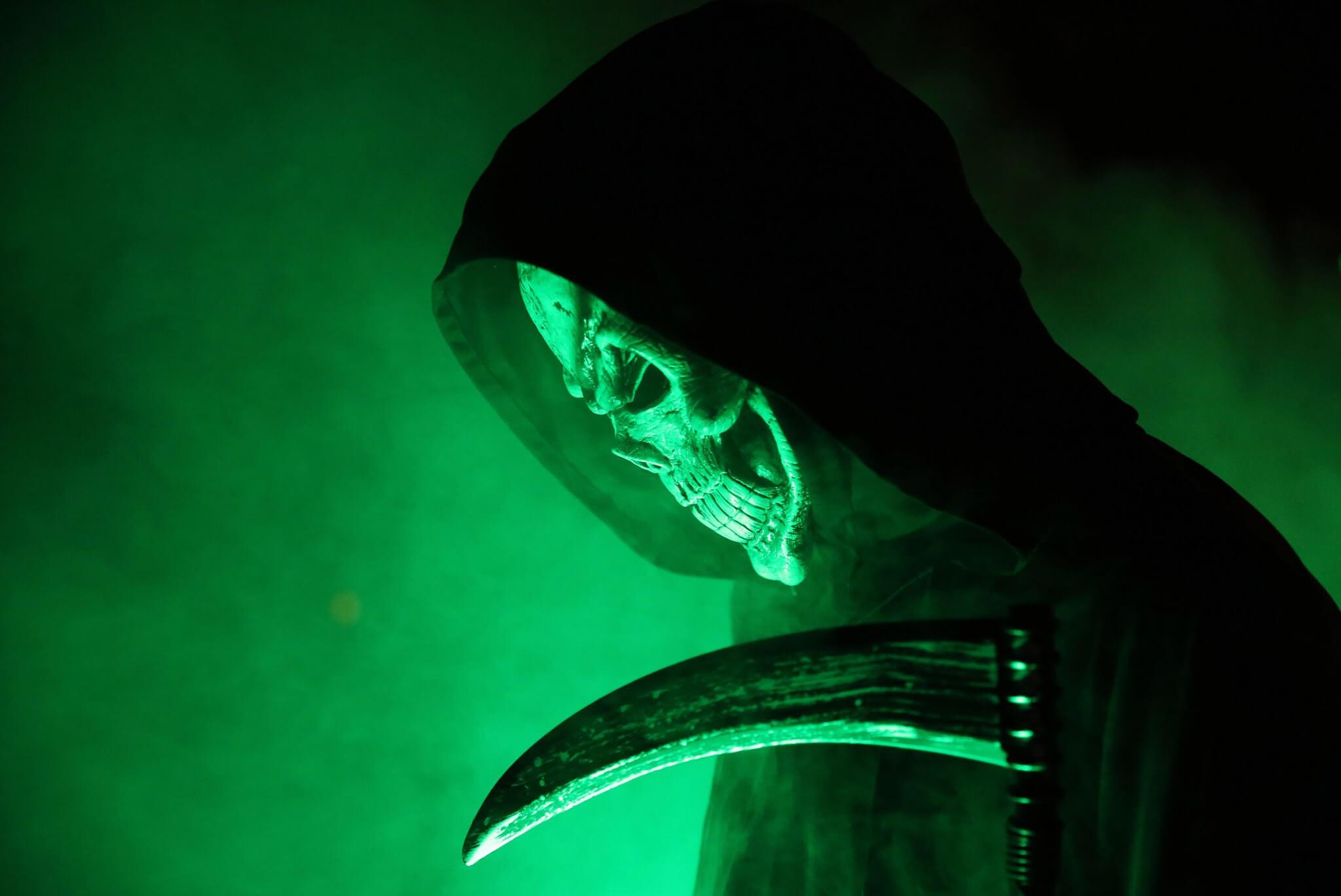 Halloweennacht Artikelbild 2