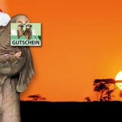 Bühnebild Artikel Zoogutschein & Futterpatenschaften